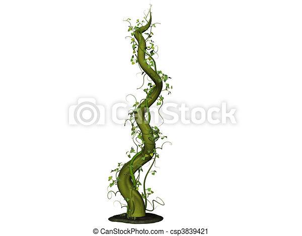 beanstalk isolated 3d illustration of a bean stalk clipart search rh canstockphoto com Beans Clip Art Beans Clip Art