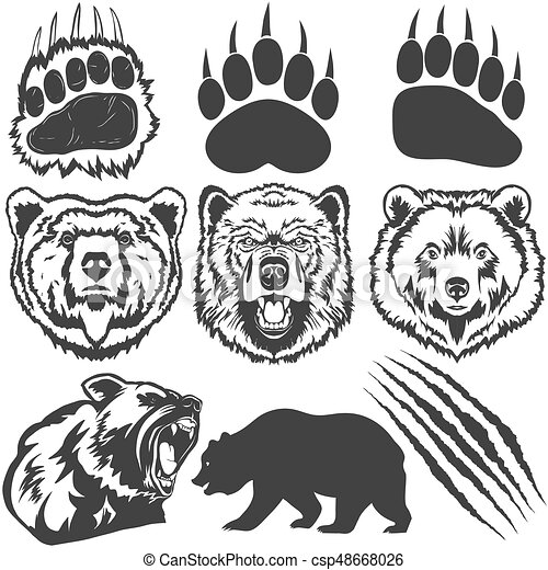 Bear Footprint With Claw Scratches Vector Bear Grizzly Footprint Paw Print With Claw Scratches Canstock