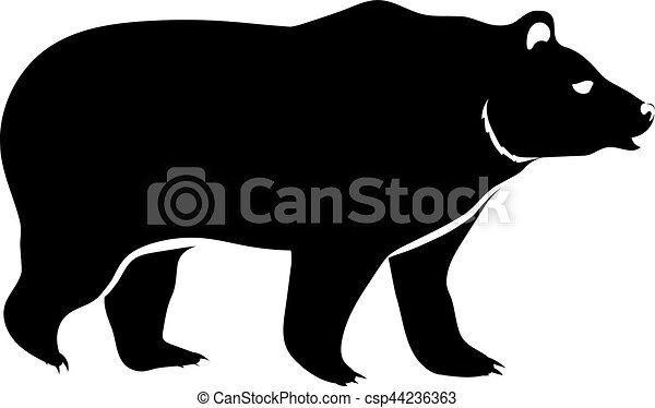 bear isolated on white - csp44236363