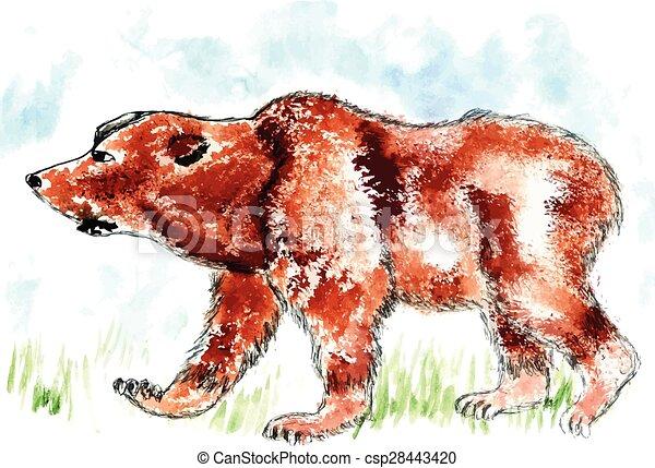 Bear Watercolor - csp28443420