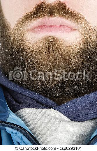 Beard Close Up - csp0293101