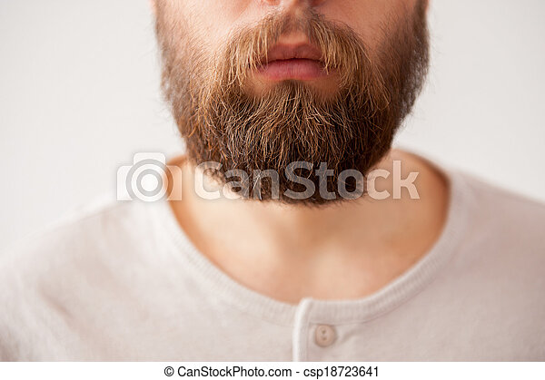 Beard man. Close-up cropped image of bearded mens face isolated on grey - csp18723641