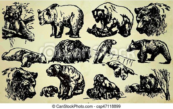BEARS - An hand drawn vector pack, line art - csp47118899