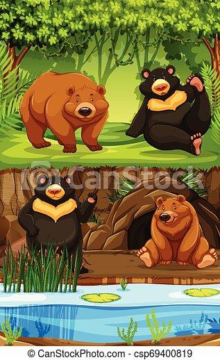 Bears in nature scene - csp69400819