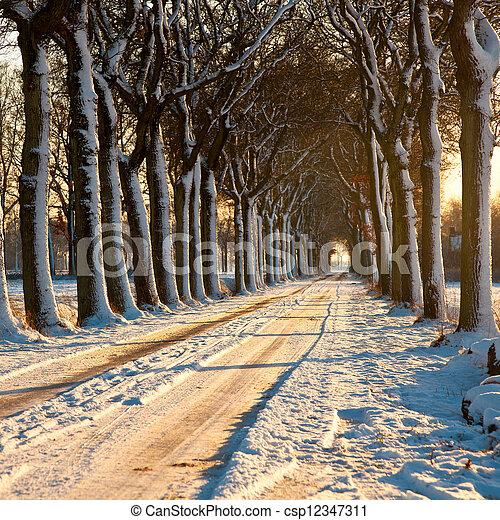 Beatiful Winter Day - csp12347311