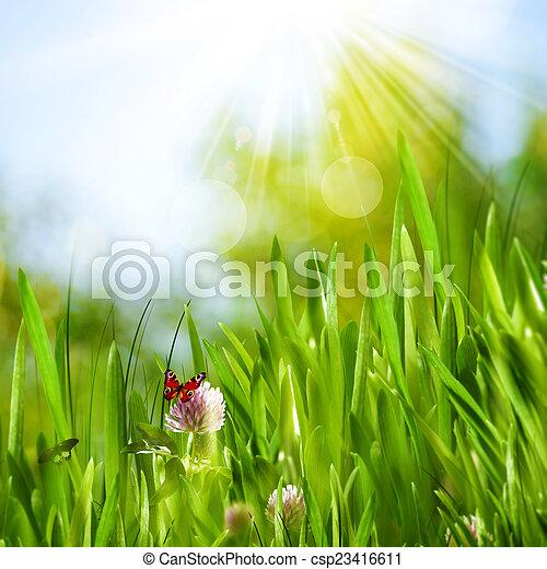 beau, été, arrière-plans, herbe, vert, butte, fleurs - csp23416611