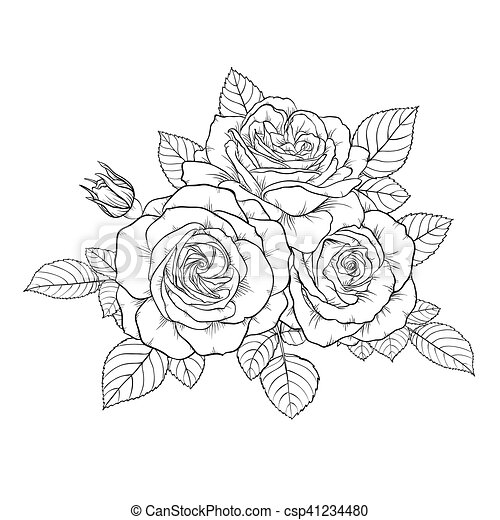 Beau bouquet rose isol arri re plan noir - Rose noir dessin ...