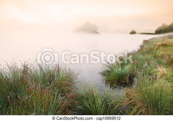 beau, brumeux, sur, lac, wih, automne, automne, brumeux, glowin, paysage - csp10959512