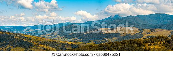 beau, campagne, automne, vallonné - csp60475221