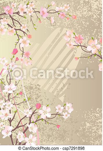 beau, cerise, floraison, branches, fond - csp7291898