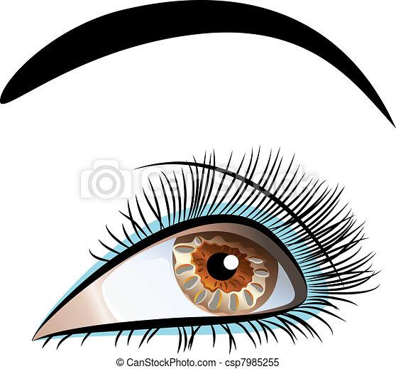 Beau, closeup, vecteur, oeil, femme. Beau, yeux bruns ...