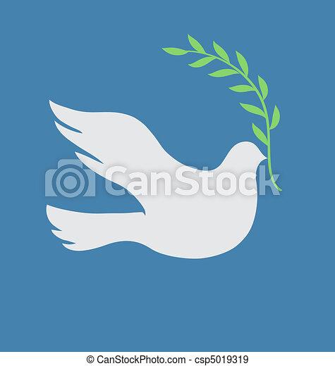 beau, colombe blanc - csp5019319