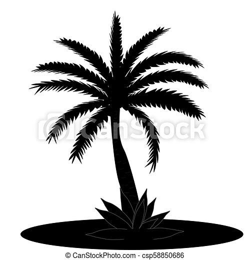 Beau Feuille Arbre Illustration Vecteur Arrière Plan Noir Paume Blanc Silhouette
