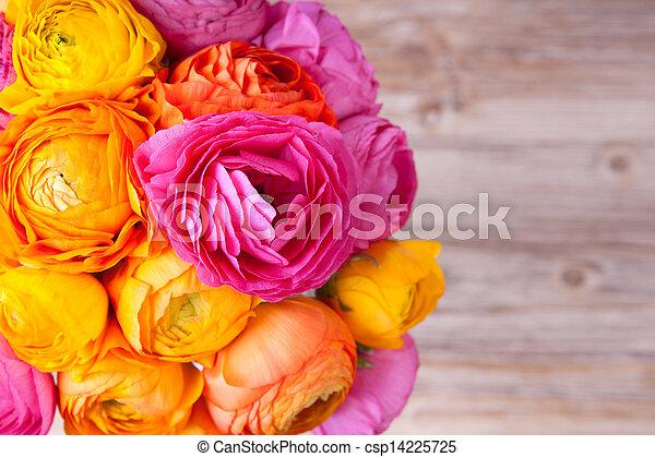 beau, fleur, coloré, bouquet, ranunculus, bois, fond - csp14225725