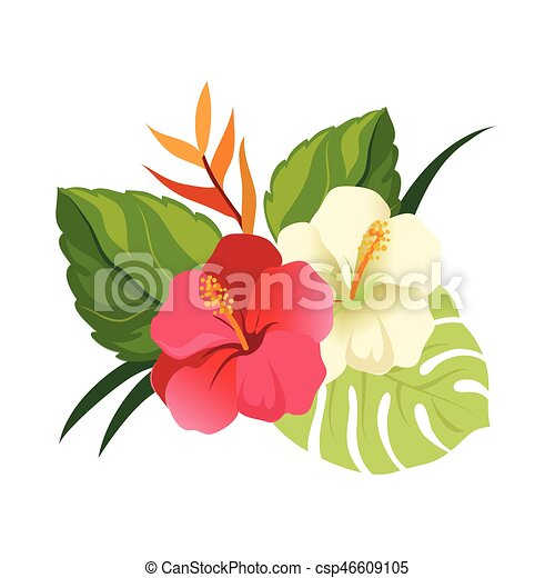 Beau hibiscus color leaves illustration l gant - Dessin d hibiscus ...