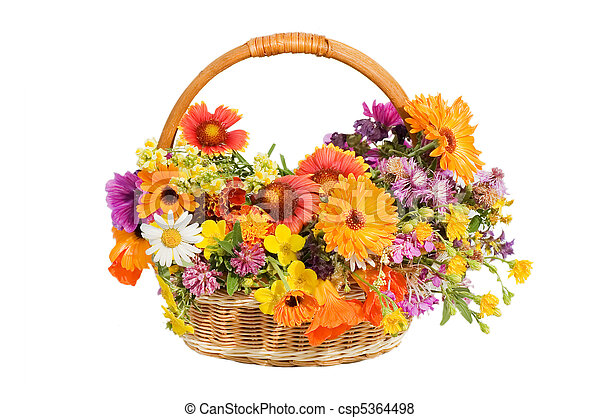 beau, panier, fleurs blanches, isolé - csp5364498