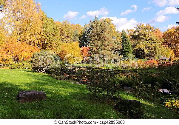 beau, parc, automne, jour ensoleillé - csp42835063