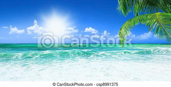 beau, plage - csp8991375
