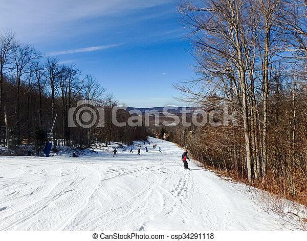 beau, timberline, hiver, virginie occidentale, paysage - csp34291118
