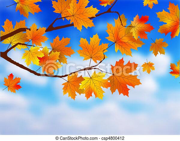 Beautiful Autumn Background against clue sky. - csp4800412