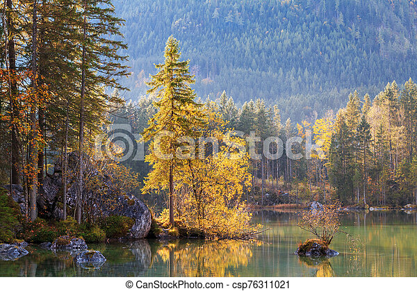 Beautiful autumn colors in the sunrise at the Hintersee lake in Bavaria alps - csp76311021