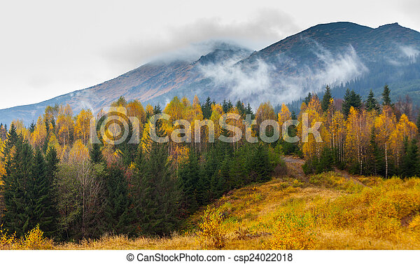Beautiful autumn landscape in mountains Karpaty in the forest - csp24022018