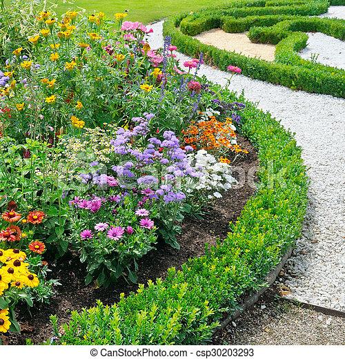 beautiful background of bright garden flowers - csp30203293