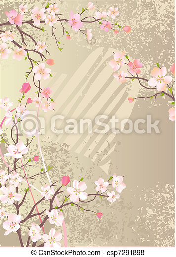 Beautiful background with blossoming cherry branches - csp7291898