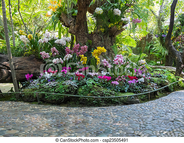 beautiful backyard garden park scene - csp23505491