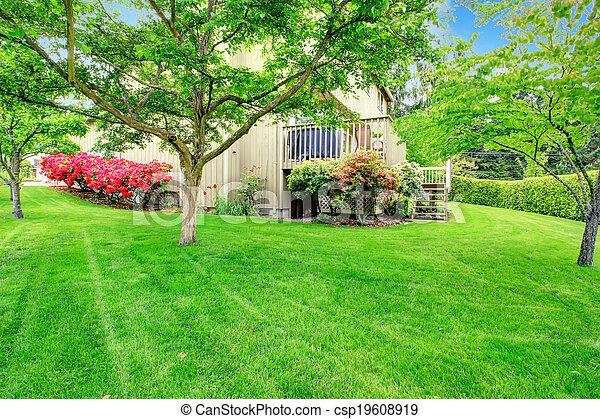 Beautiful backyard garden - csp19608919