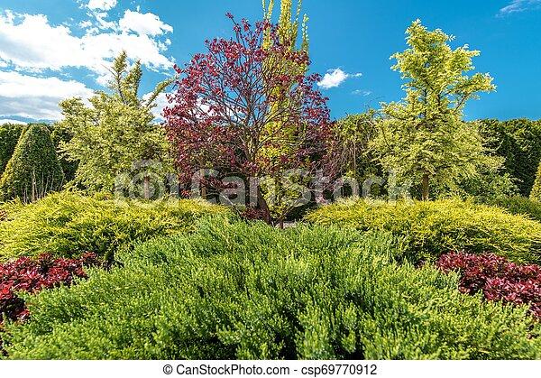 Beautiful Backyard Garden Plants - csp69770912