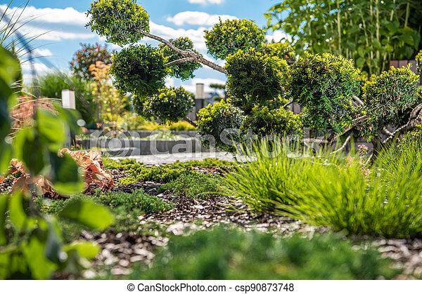 Beautiful Backyard Garden Plants - csp90873748