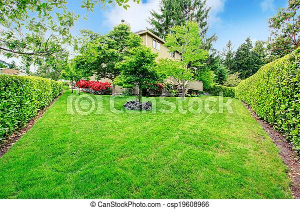 Beautiful backyard garden - csp19608966