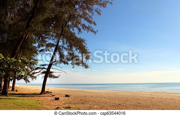 Beautiful beach scenery with blue sky, yellow sand and trees - csp63544016