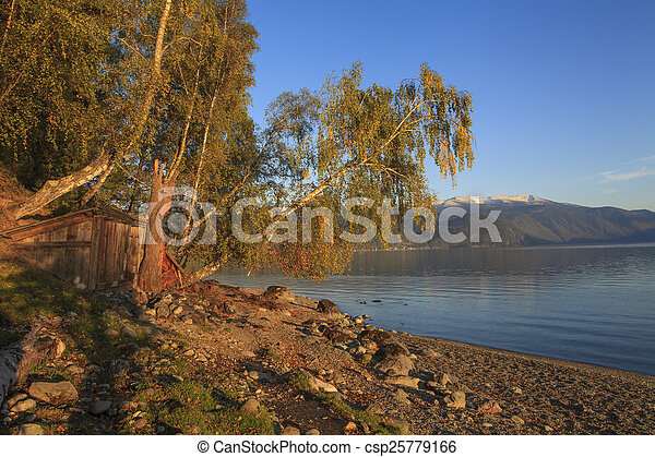 Beautiful birch on the bank of a mountain lake - csp25779166