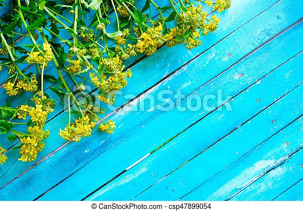 Beautiful blue background with yellow wildflowers - csp47899054