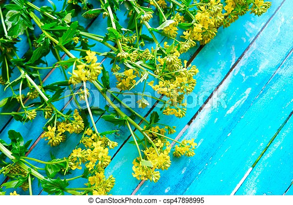 Beautiful blue background with yellow wildflowers - csp47898995