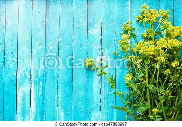 Beautiful blue background with yellow wildflowers - csp47898997