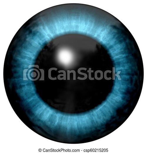 Beautiful blue eyes with bright light reflection. Fashionable blue eye - csp60215205