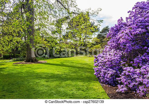 Beautiful, botanic garden in Spring. - csp27602139