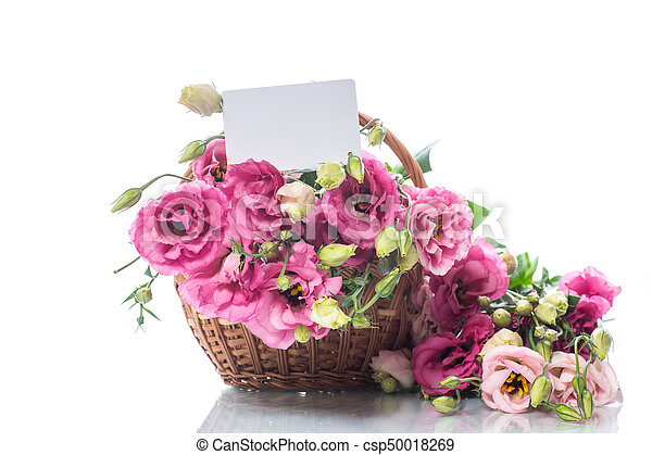 Beautiful bouquet of pink lisianthus flowers on a white background beautiful bouquet of pink lisianthus flowers csp50018269 mightylinksfo