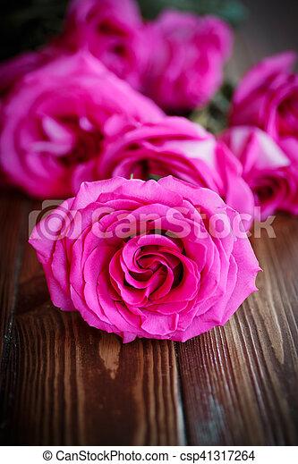 beautiful bright pink roses - csp41317264