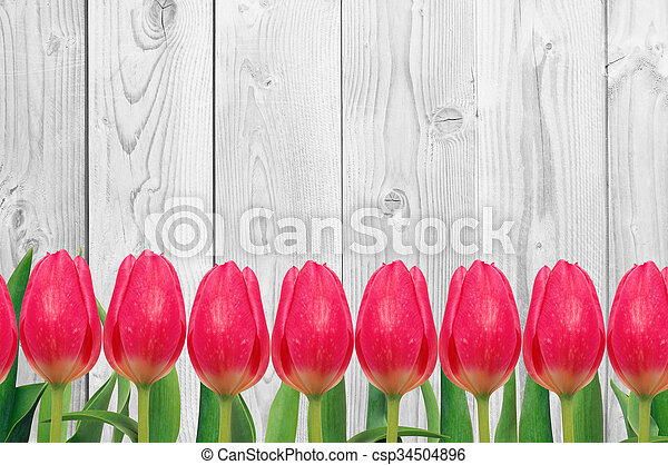 Beautiful bright tulips on wooden background - csp34504896