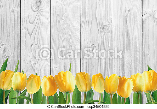 Beautiful bright yellow tulips on wooden background - csp34504889