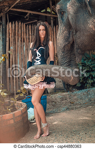 Beautiful brunette lady feeding an elephant - csp44880363