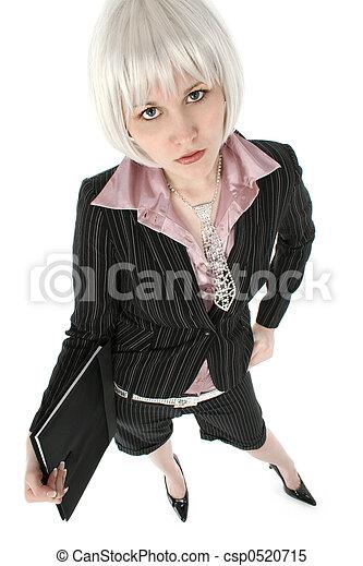 Beautiful Business Woman - csp0520715