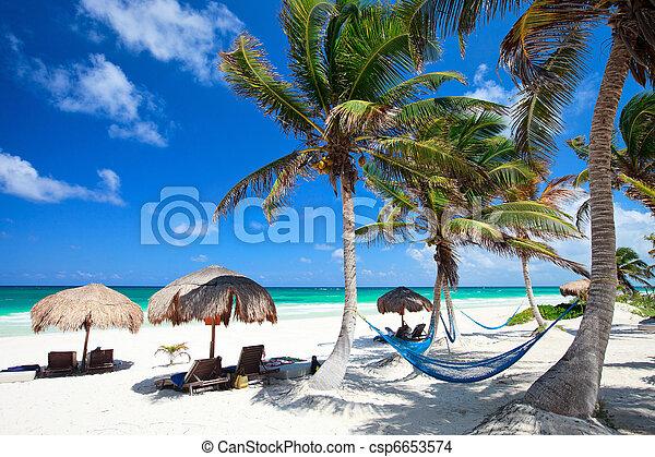 Beautiful Caribbean beach - csp6653574