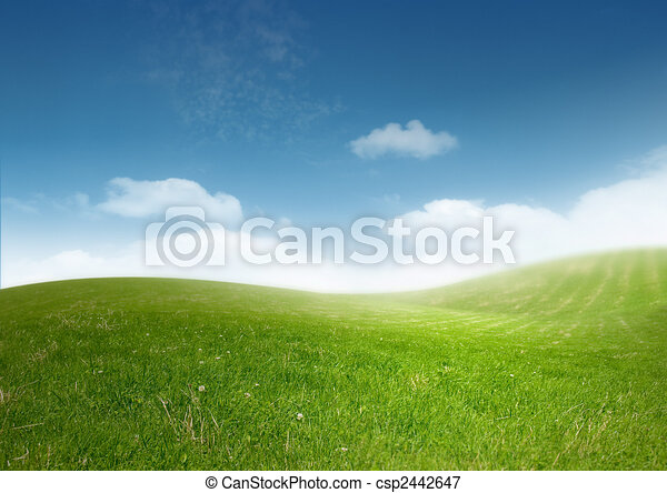 Beautiful Clean Landscape - csp2442647
