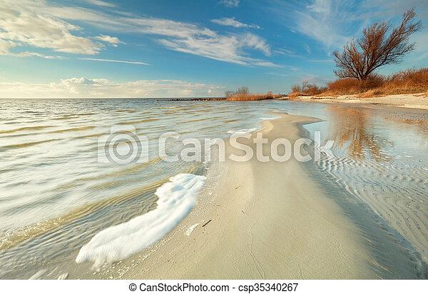 beautiful coast at low tide at Ijsselmeer - csp35340267