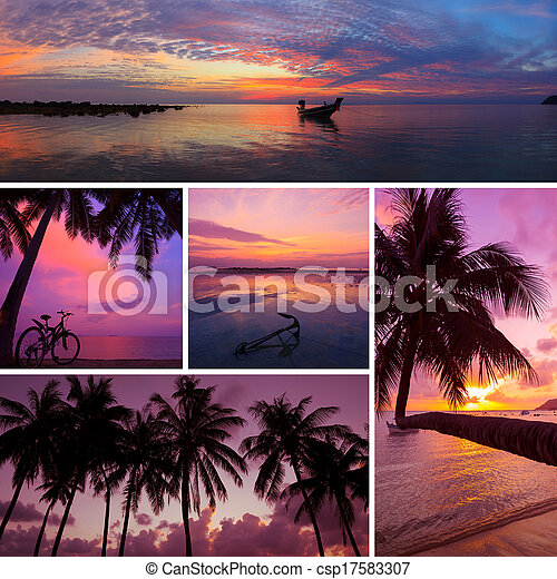 Beautiful collage of tropical sunset images, beach, palm trees at twilight - csp17583307
